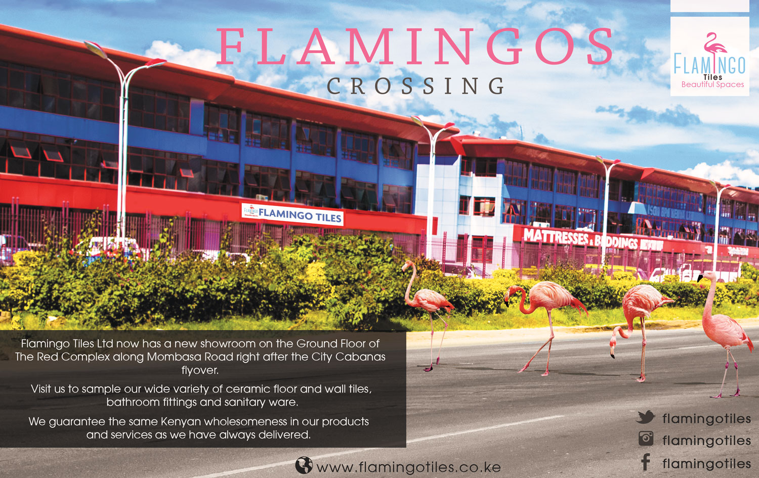 Flamingos-crossing-newspaper-AD